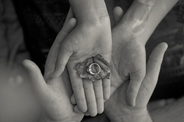 Hands holding wedding rings